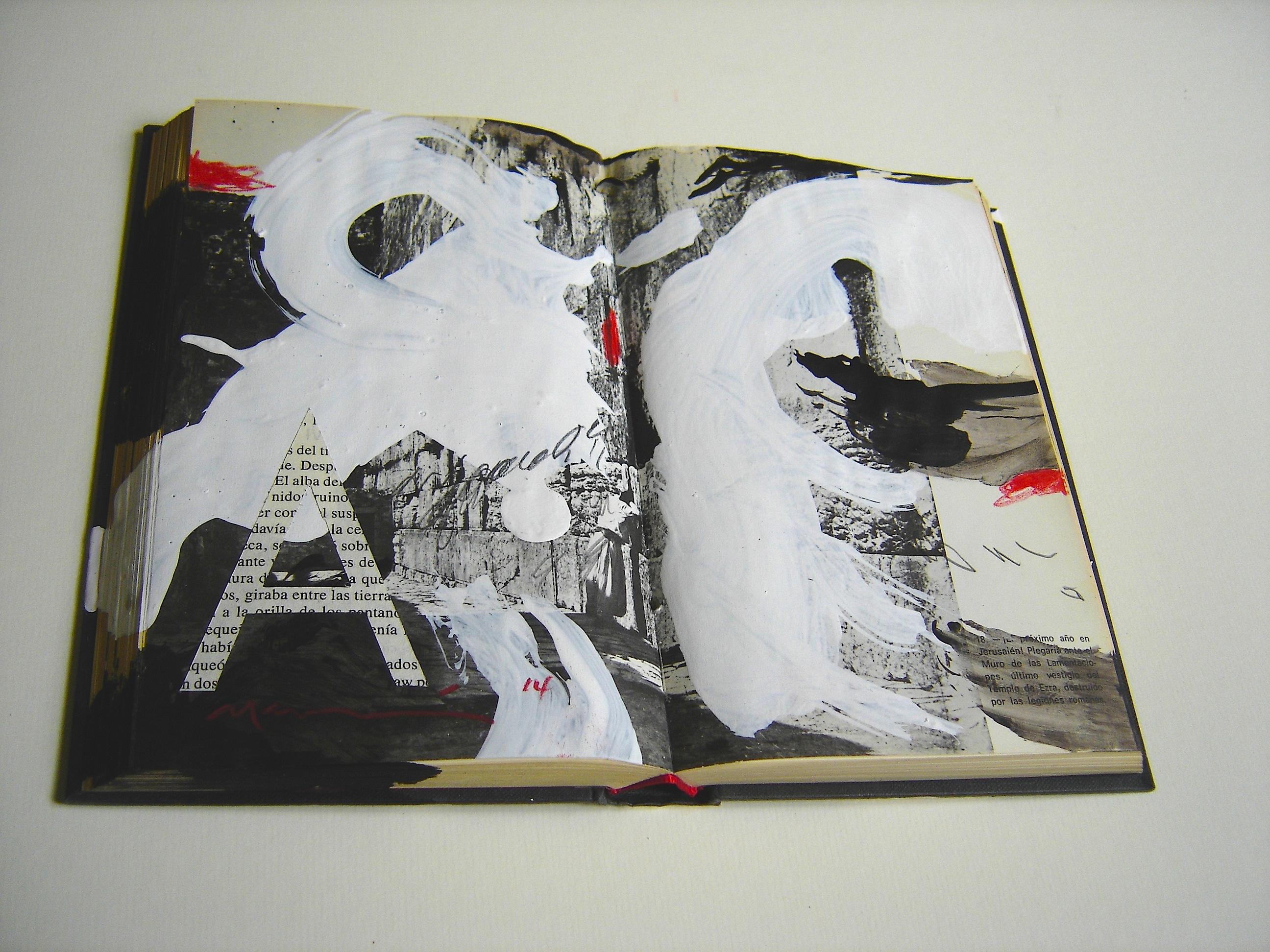 Libro pint, col privada Mireia