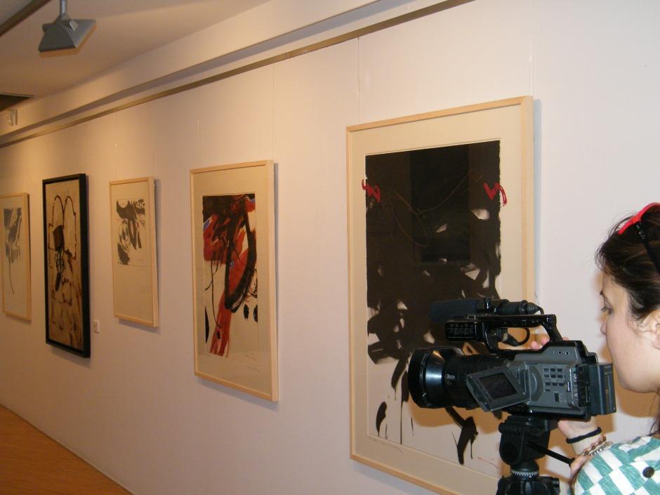.Sala. Coma Estadella Expo. ROMÁNICUM, TV Lleida 2011:12